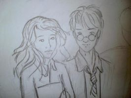 Harry and Hermione by krisi932