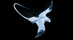 May 24  red billed tropic bird by oukamiyoukai45