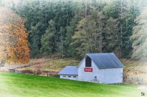 Coca Cola Barn by ShannonCPhotography