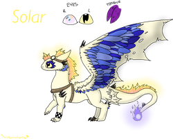 Solar the Night-fury - OC reference Sheet by MelodyoftheNightFury