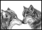 Wolf mates by Amarevia