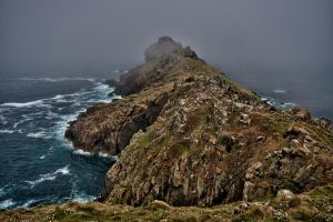 Gurnards head 1 by forgottenson1