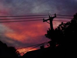 Sky Wires And Roofs Oh My 014 by notmor