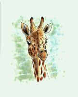 Copic Giraffe by LuckyIrishEyes