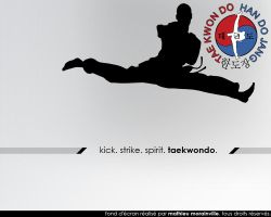Taekwondo Wallpaper by Eligius57
