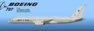 NATO 757 by Wolfman-053