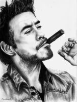 Robert Downey Jr. by psichodelicfruit