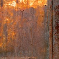 rusty beauty 137 by EvaShoots