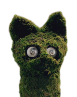 Katy Perry ''Wide Awake'' PNG (Cat) by danperrybluepink