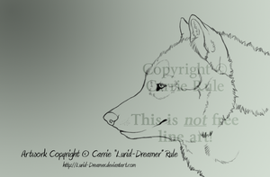 Wolf Portrait: Lines by Lurid-Dreamer
