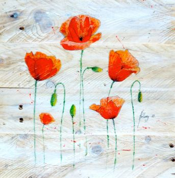 Coquelicots 02 by Stephanie-HY