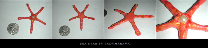 Sculpey Sea Star by LadyMarava