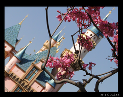 Castle in Bloom by Crimsongypsy1313