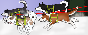 Sled Dogs! by Alcemistnv