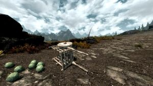 Skyrim - Don't cry over spilled cabbages by NDC880117