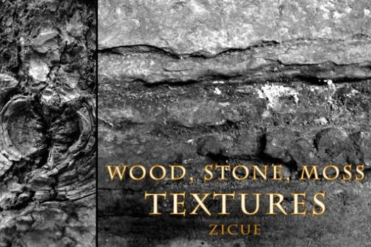 Wood Stone Moss Texture Photoshop Brushes PART 1 by Zicue
