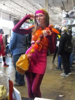 Anime North 2015  381 by japookins