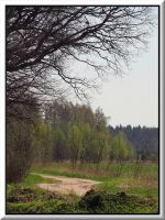Springscape... by Yancis