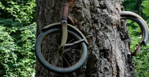 Bicycle Tree by BeckaMarr