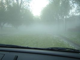 Driving in the Fog3 by SilverPyroLupogryph