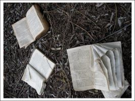Scattered books by talkovercoffee