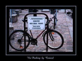 No Parking by caracal