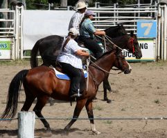 Stock - Horse Team Penning - 014 by aussiegal7