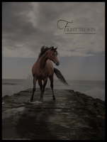 Fight to win by Alexandra88