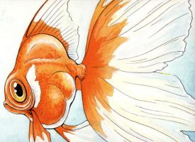 Distorted Fish by Rowen-silver