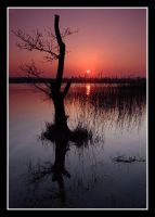 MARCH SUNSET by gordonrae