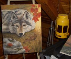 Paw on Canvas: October Fire by hitail