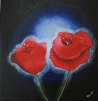 Magic poppies by feeora