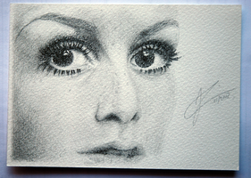 'Christmas' Card 2 - Twiggy by noiroze