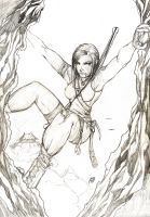 Tomb Raider - Tribute - Pencils by bluedragon82