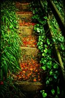 Autumn stairs by roxiannie