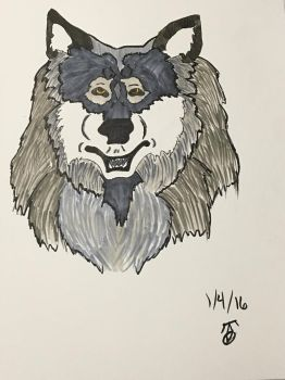 Copic Wolf by Murdoc3