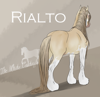Rialto by The-White-Cottage