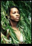 exotic Beauty by mobiusco-photo