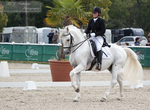 Dressage Cup_157 by CalyHoney