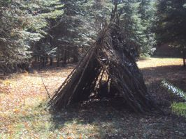 Fort in the Woods by stevenvog9