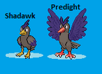 Fakemon:Shadawk and Predight by pinkfloyd1234
