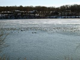 Winter Lake IV by Baq-Stock