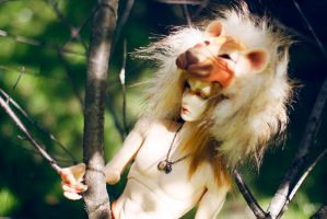 the soul of lion - 1 by surya-s-dolls