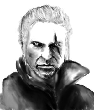 Fav male characters: The witcher by patszy
