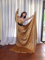 DS: Gold Dress 25 by dazzle-stock