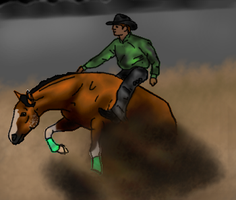Chico Reining Entry by Starcather9