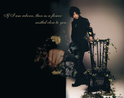 Gackt - Flower  close to you by Kot1ka