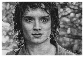 Frodo Baggins by Cerzus69