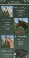 Easter breedings 2012 - CLOSED by EquineRibbon