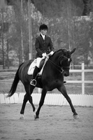 Bw dressage by KeiraStar